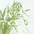 servetten (papier 33 x 33cm) Early Snowdrops
